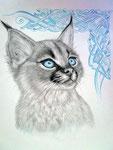 """""""Blue Eyes"""", Bleistift + Buntstift auf Papier, 18 x 24 cm, Jahr: 2019"""