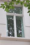 Fenster, Bonn Goebenstr.