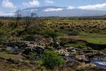 Mauna Kea 4205 m ü. M.