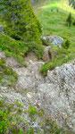 12.6.14, steiler Aufstieg auf den Mooskopf