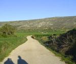 Richtung Tafelberg Alto de Mostelares