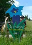 4.6.14, Salzburger Almenweg