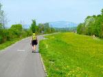 Von Mauthausen nach Linz - Reines Pflastertreten