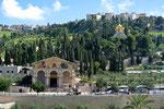 Kirche der Nationen und die Maria-Magdalena-Kirche