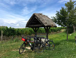 Radweg Neusiedlersee