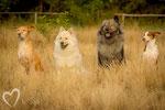 Meggie, Lea, Teddy, und Pepe ♥♥♥♥