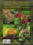 Faszination Rosen: Tipps,  Anregungen und Ideen zur Auswahl, Pflege und Verwendung von Gartenrosen