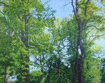 Lichtung | 2015 | 100 x 140 cm | Acryl auf Baumwolle