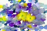 """""""あじさい""""  water color,paper 10×14.8cm 2015"""