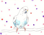 """""""水玉インコ""""  watercolor,paper 10×14.8cm"""