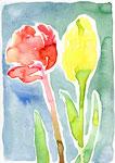 """untitled""  watercolor,paper 14.5×20cm 2017"