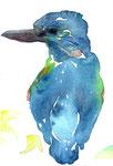 """""""カワセミ""""  water color,paper 10×14.8cm"""