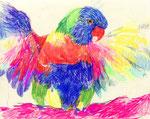 """""""ゴシキセイガイインコ""""  watercolor,paper 10×14.8cm 2015"""