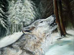 """Wolfsblut"" Pastell 28,5x38,5cm (c) D.Saul 2012"