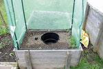 curaflora im Tomatenhaus ohne Pflanzgefäß