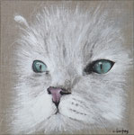 """Chat persan blanc"" - acrylique - 30 x 30 cm"