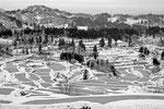 春、雪解けの棚田 (この地区は全国でも有名な棚田地帯である)