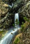 Parco Nazionale d'Abruzzo, Lazio e Molise, Camosciara