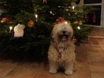 """Chrismondanas Cooper als """"Weihnachtsmann 2011!"""""""