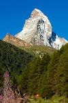 Matterhorn  oberhalb von Zermatt