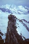 Kletterer auf dem Vorgipfel mit Liskamm 4527 m und Castor 4226 m und Pollux 4091m