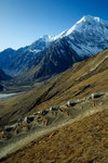 Blick ins Langtang Tal