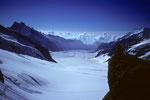 Aletschgletscher mit 23 km Länge, der grösste Gletscher der Alpen