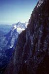 Wetterhorn 3701 m mit Eiger Nordwand vom Westgrat