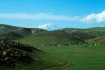 Ararat  5165 m in der Ferne