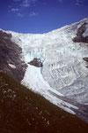 Oberer Grindelwaldgletscher vom Weg zur Glecksteinhütte
