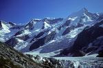 Gross Fiescherhorn 4049 m über dem  Oberen Eismeer