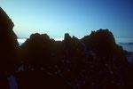 Verbindungsgrat vom Schreckhorn zum Lauteraarhorn 4042 m im Gegenlicht