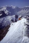 Seilschaft am Gipfelgrat vom Wetterhorn