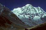 Annapurna I   8091 m - Südwand -