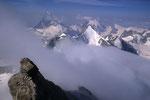 Gipfelblick auf  Matterhorn 4478 m, Obergabelhorn 4063 m und Dent d´Herens 4171 m.