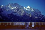 Jungfrau 4158 m mit Silberhorn von der Kl. Scheidegg 2061 m
