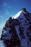 Rückblick zur Lenzspitze 4294 m