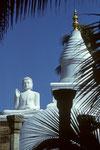 Mihintale - Geburtsstätte des Buddhismus in Sri Lanka - Tele -