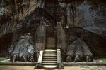 Sigiriya - Eingang mit Löwenterrasse -