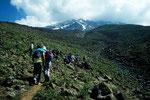 Aufstieg zum Hochlager  4200 m