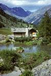 Paradisia   Alpenblumengarten  Cogne