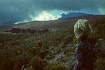 Horombo Hütten  3719 m in Sicht
