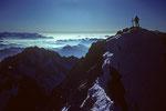 Gipfel Barre des Écrins 4102 m