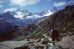 Glückliche Rückkehr zur Berghütte  Fluhalp 2616 m und weiter bis nach Zermatt
