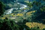 Wasser und Reis als Lebensgrundlage