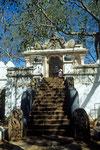 Eingang zum Bodhi-Baum Ficus religiosa