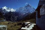 Blick vom Annapurna Base Camp auf Machapuchare 6997 m