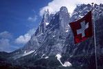 Wetterhorn 3701 m von Grindelwald-Dorengaden