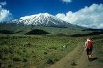 Start zum Green Camp auf  2400 m