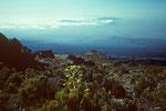 oberhalb der Horombo Hütten